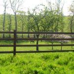 Horserail 2W